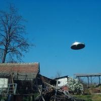 Lukacsmacska UFO-élménye