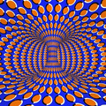 25.01.13 - Mozgás illúzió