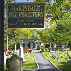 Az első kisállat temető
