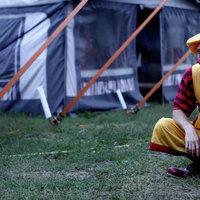Bolhás cirkusz