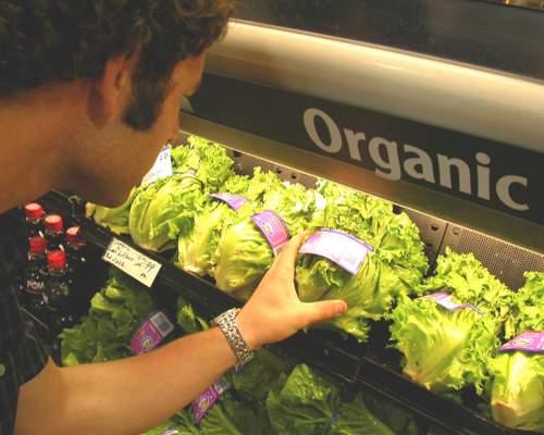 organikus élelmiszer