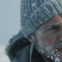 Neeson,az alfahím  -  Fehér pokol (The Grey)