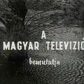 Tüskevár (1967)
