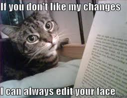 writing-cat.jpg