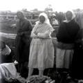 Fénnyel írt történelem : Vajszló 1910 körül