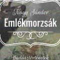 Nagy Sándor: