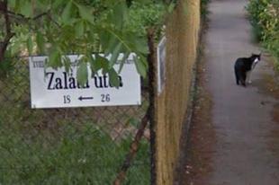 Ormánsági falukról neveztek el budapesti utcákat