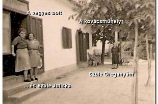 Képes falu- és családtörténet: Nagycsány (Tarlósi József és Tabi László jóvoltából, 2. rész)