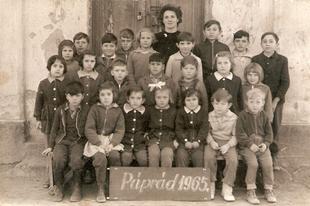 Képes múltidéző - Páprád