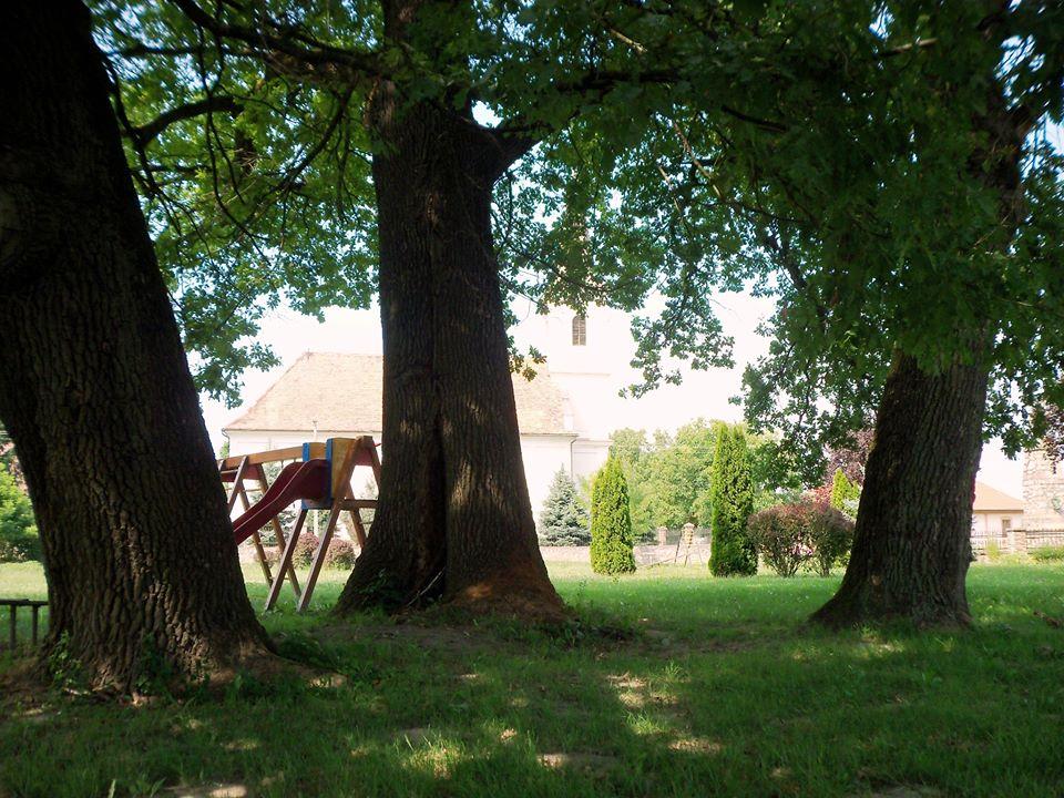 Árnyas fák alatt...
