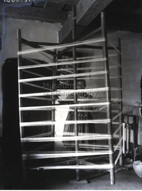 Vetőfa - Vajszló, 1910-es évek. <br />A helységnév bizonytalan, lehetséges, hogy a fotó Páprádon készült<br />ff., üvegnegatív, 13x18 cm<br />