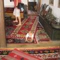 Boszniai szőnyegélmények I. - Mostar