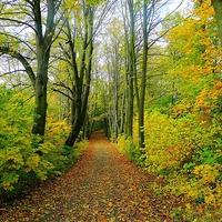 Könnyű túrajavaslatok őszi hétvégékre