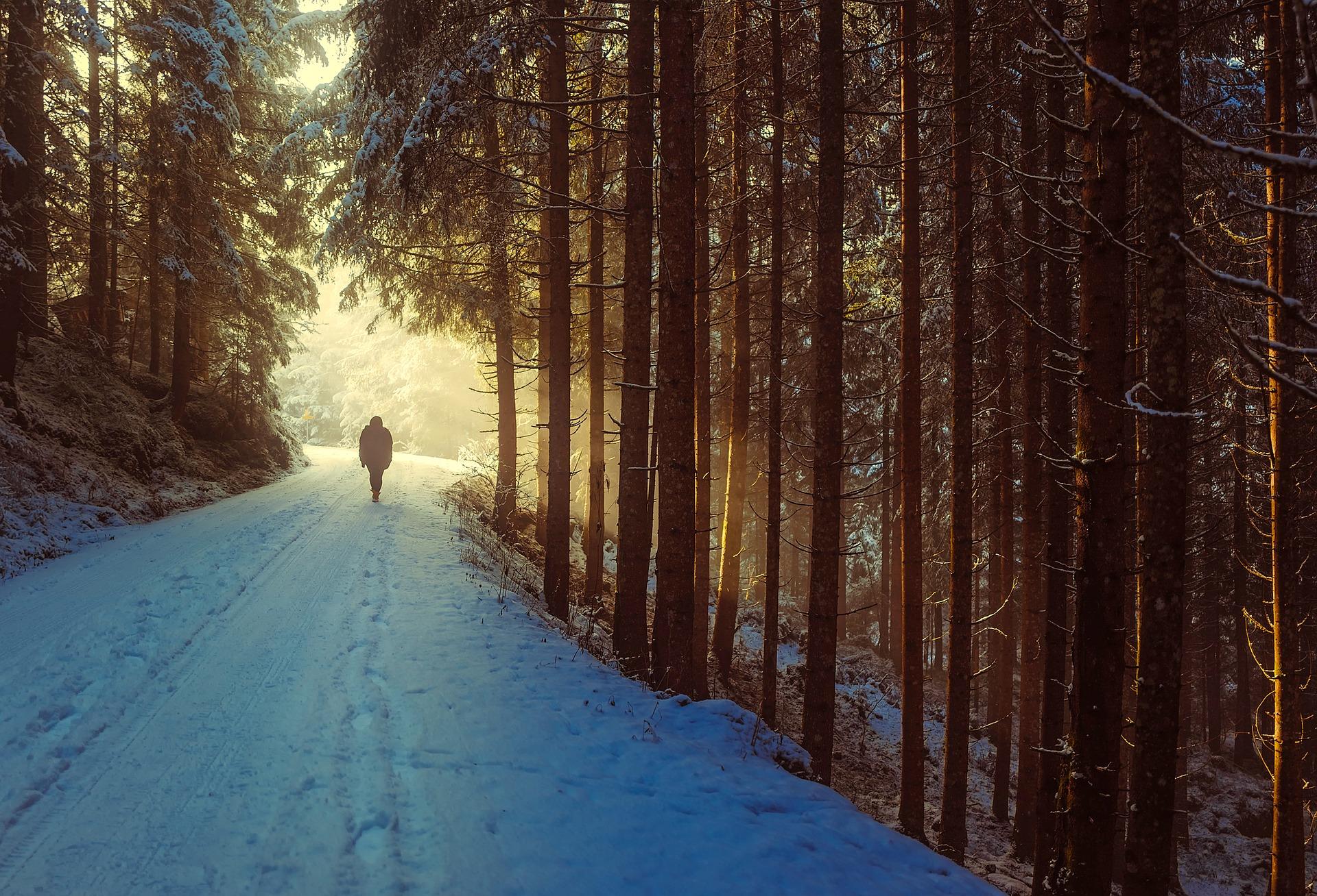 winter-1936638_1920.jpg