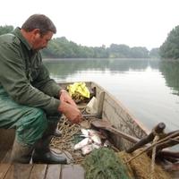 Horgászat a tilosban 3. - Árammal, gereblyével