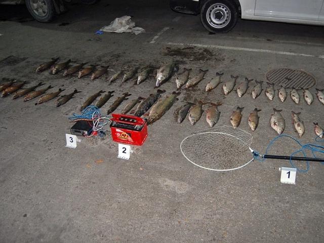 Villanyhalászok akadtak horogra