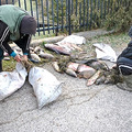 Gyönyörű halak akadtak az orvhalászok hálójába