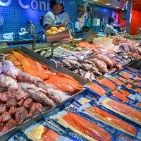 Az ellenőrzöttek harmadánál talált ismeretlen eredetű halat a Nébih