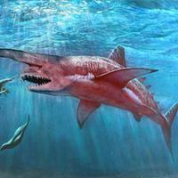 Cápatámadás Malibuban-avagy a cunambia oltott cápás zabálás