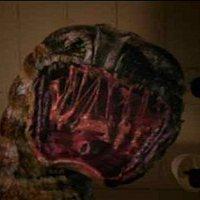 Megasnake-avagy a Teszkós bőrű kígyó elszabadul