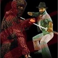 Ninja USA-avagy a low budget Amerikai Ninja