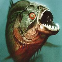 Piranha 2010-avagy a nagy zabálás