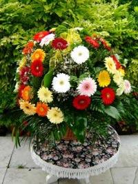 Virág, virágküldés