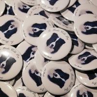 Pásztorkutya verseny és Border collie találkozó szombaton!