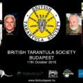 British Tarantula Society Budapest 2015 madárpók szeminárium