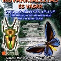 Nemzetközi rovarkiállítás és vásár Budapesten 2013 tavaszán!