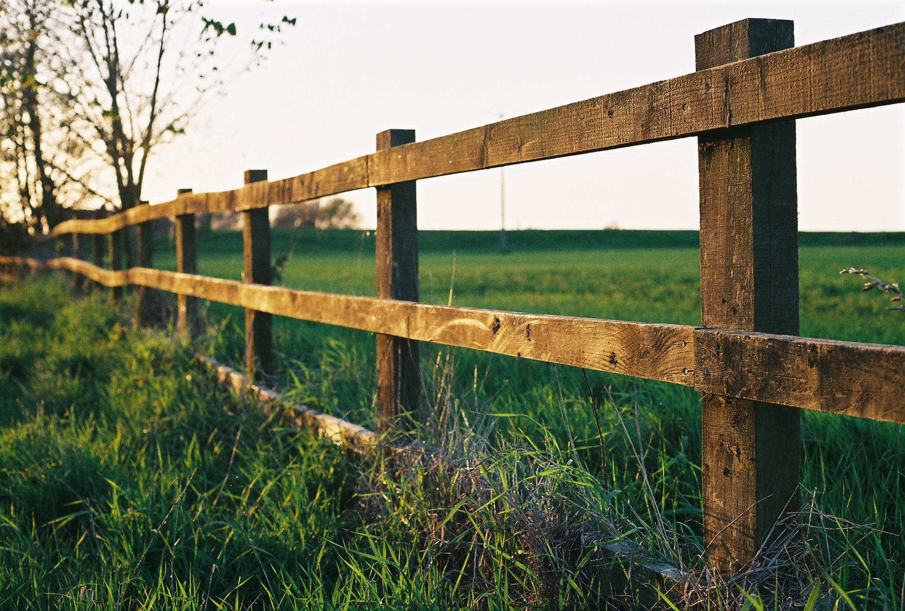 farm_fence_in_watlington.jpg