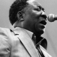Kultikus albumok: Muddy Waters – Electric Mud