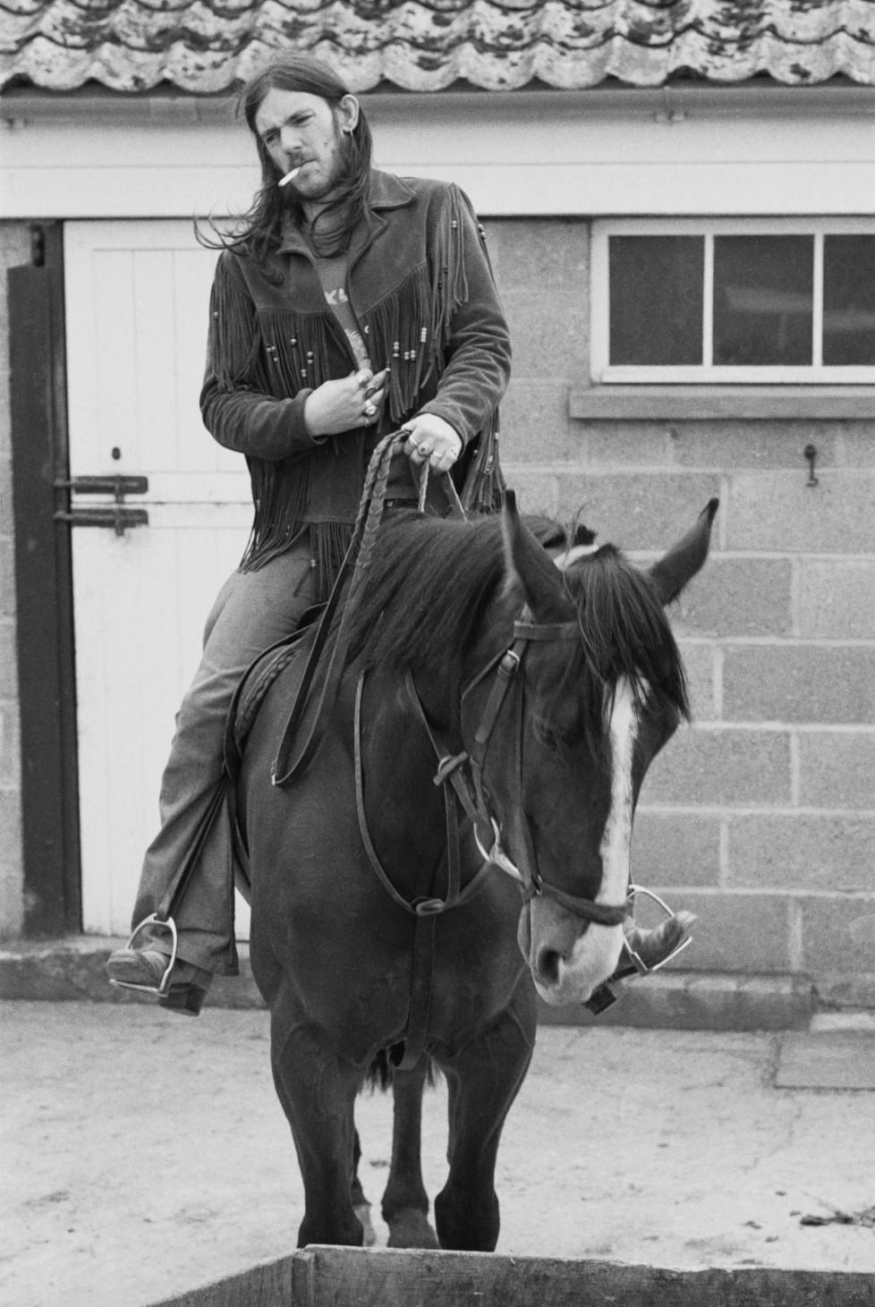 lemmy_horse_01.jpg