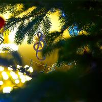 A szív visszahúz - Társasköri karácsony a Bubnó és a Mezei családdal