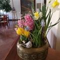Tavaszköszöntés az Óbudai Társaskörben