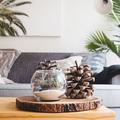 5 tipp, hogyan frissítsd fel az otthonodat pénztárcakímélő módon az idei trendekkel!