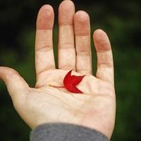 4 dolog, amit idén ősszel ki kell próbálnod