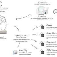 Okosotthon kezdőknek: milyen részei vannak az okosotthon rendszernek?