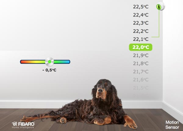 fibaro_motion_temp.jpg