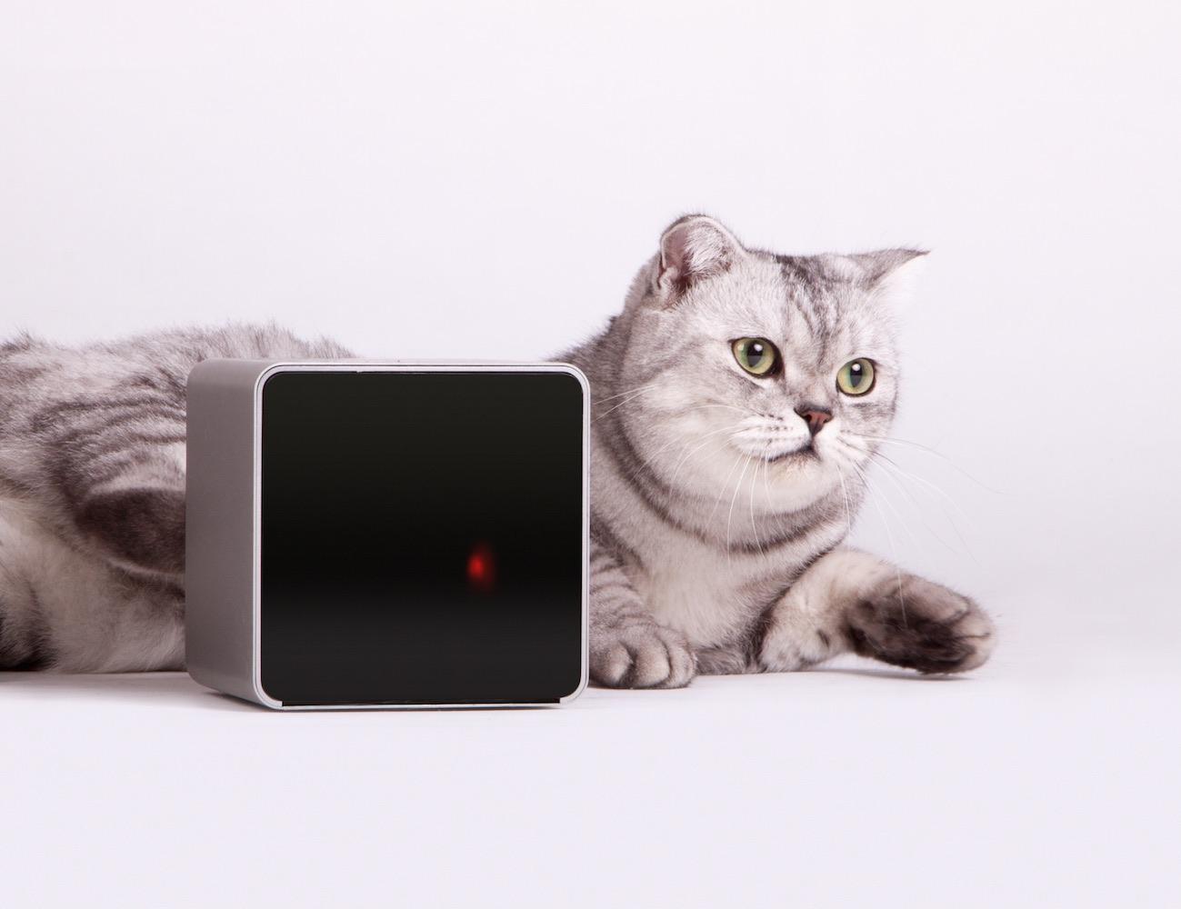 petcube-remote-wireless-pet-camera-02.jpeg