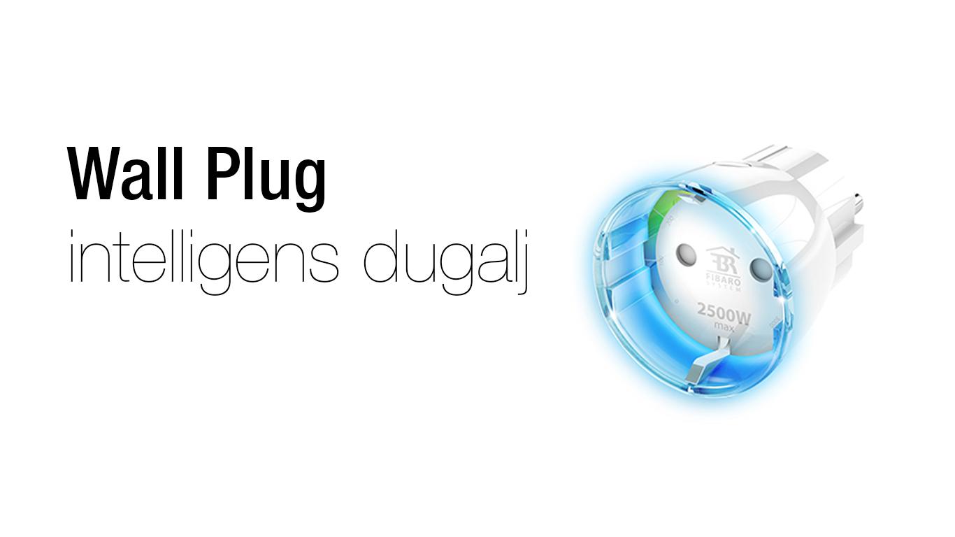 wallplug.jpg
