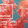 Pantone: ez 2019 színe