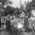 A Skanzen bemutatja: 1956 falun