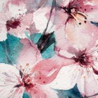 Tavaszváró krémek a Weledától