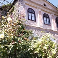 Bor, mámor, Provence magyarul