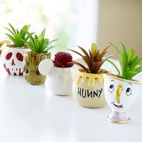 Növényt a gyerekszobába!
