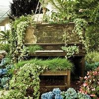 A Filharmonikások kertje