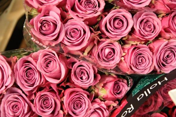 Virágpiac-Szigetszentmiklós_4.jpg