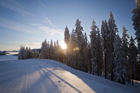 Ski amadé Landschaft und Misc 20.jpg