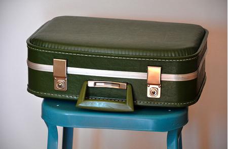 DIY: macska a bőröndben